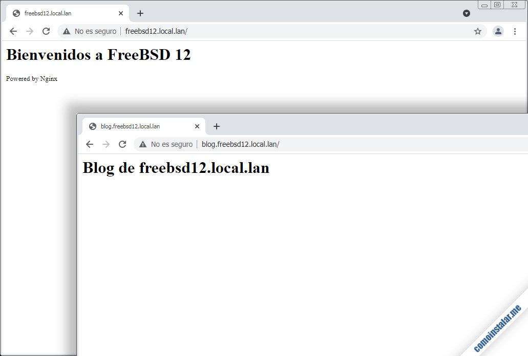 servidores virtuales nginx en freebsd 12