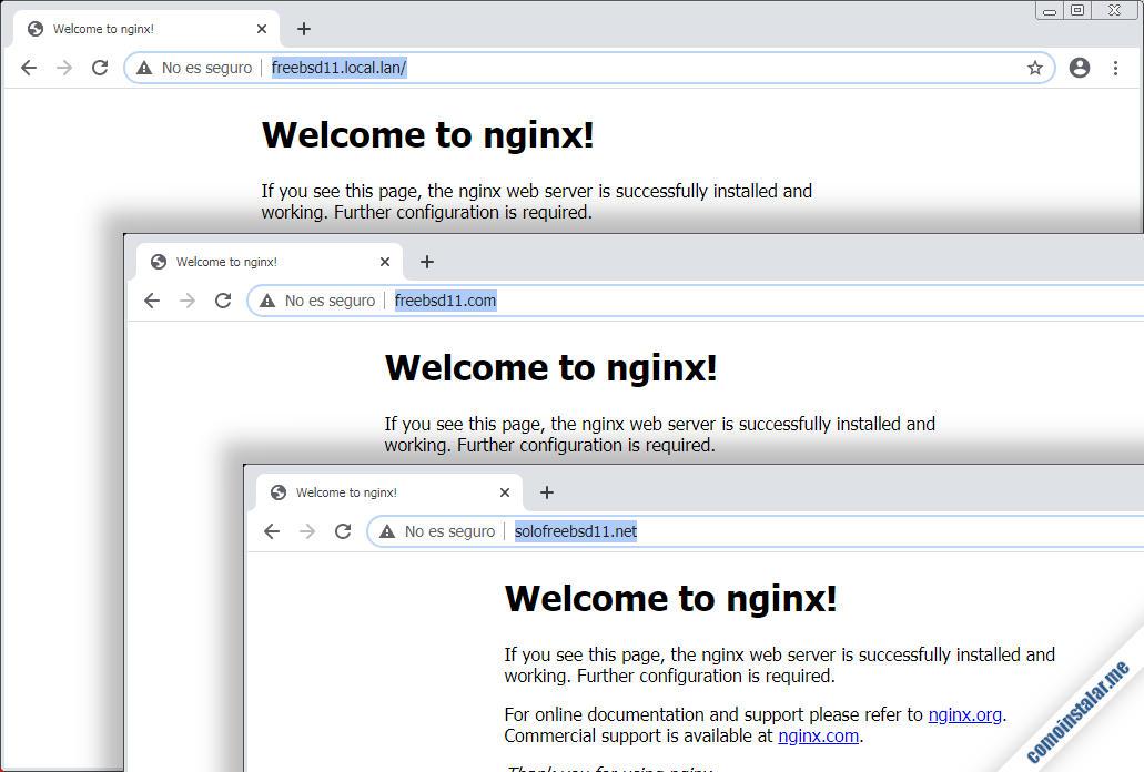 como configurar nginx en freebsd 11